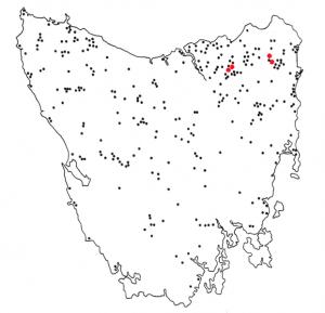 621px-Thylacine_sightings_Tasmania
