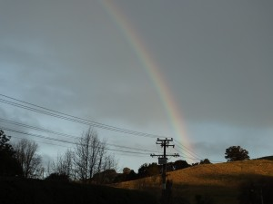 Rainbow over Puhoi