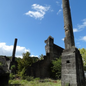 Mahurangi Cement Works – Warkworth