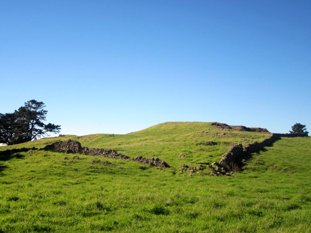 Otuataua Stonefields Historic Reserve