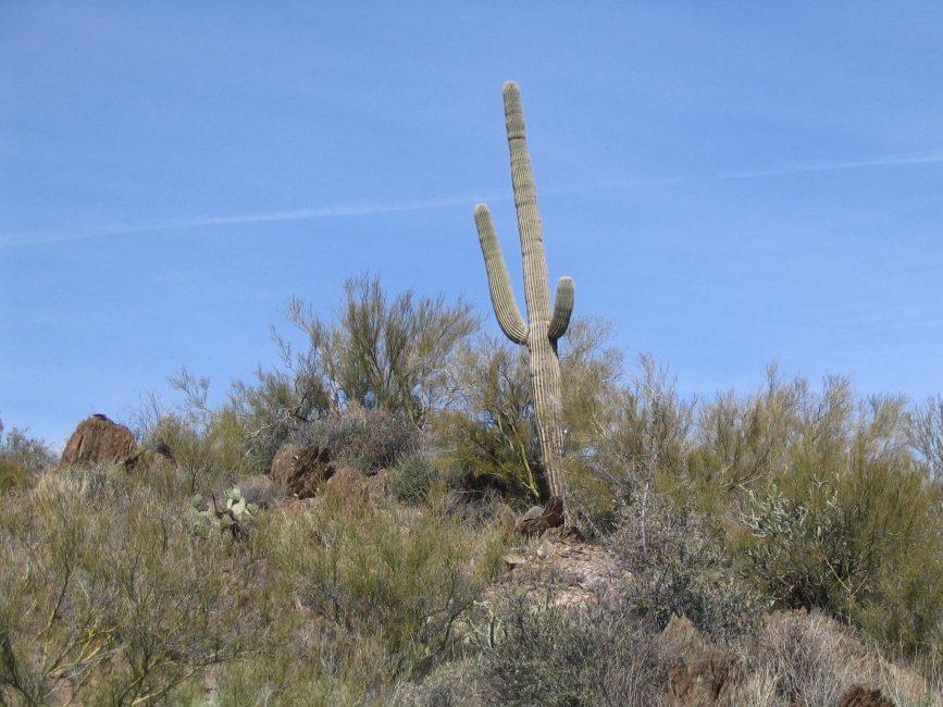 Jerome, Arizona – USA