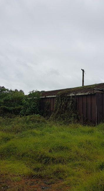 Rural rustic sheds