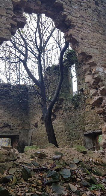 Derelict Church – Fife, Scotland