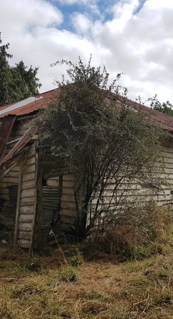 Rural Hideaway – South Auckland