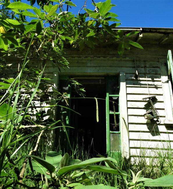 Farm House – South Auckland