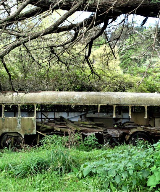 Mind the closing doors: Derelict Bus – West Auckland