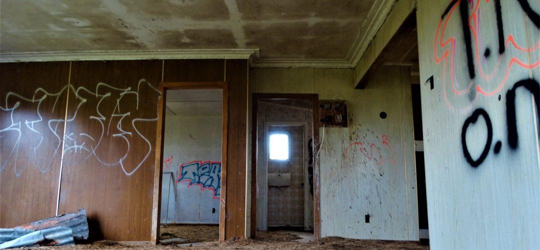 Home on the range – Huntly