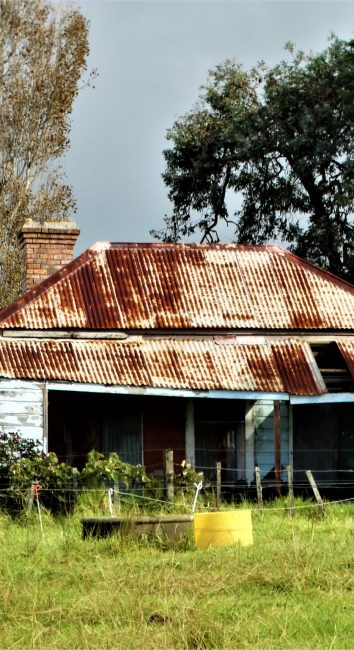 House with horses – South Auckland