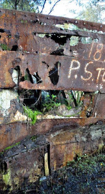 Tongariro Shipwreck – Hobsonville