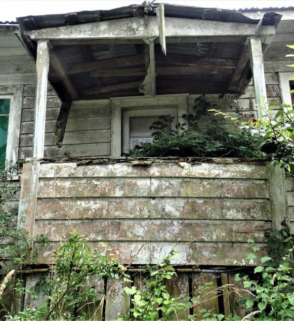 Abandoned Farmhouse – Auckland