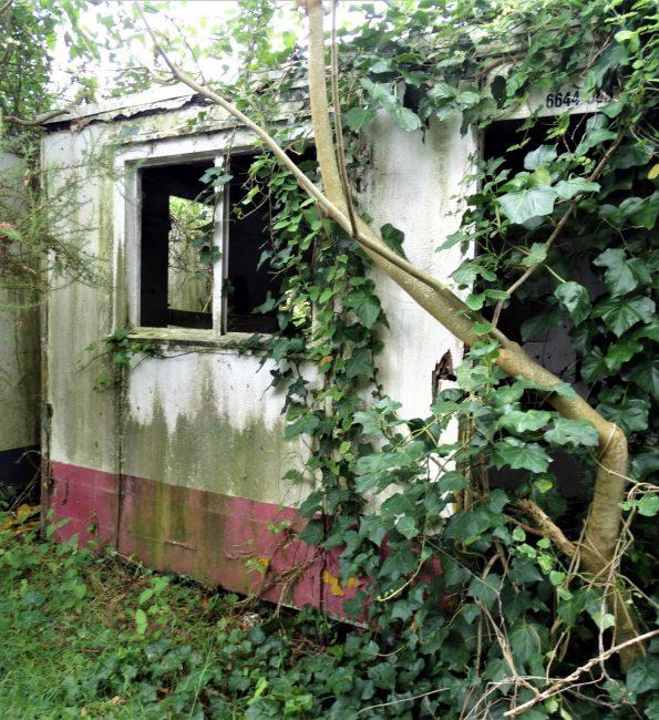 Workman's sheds – West Auckland