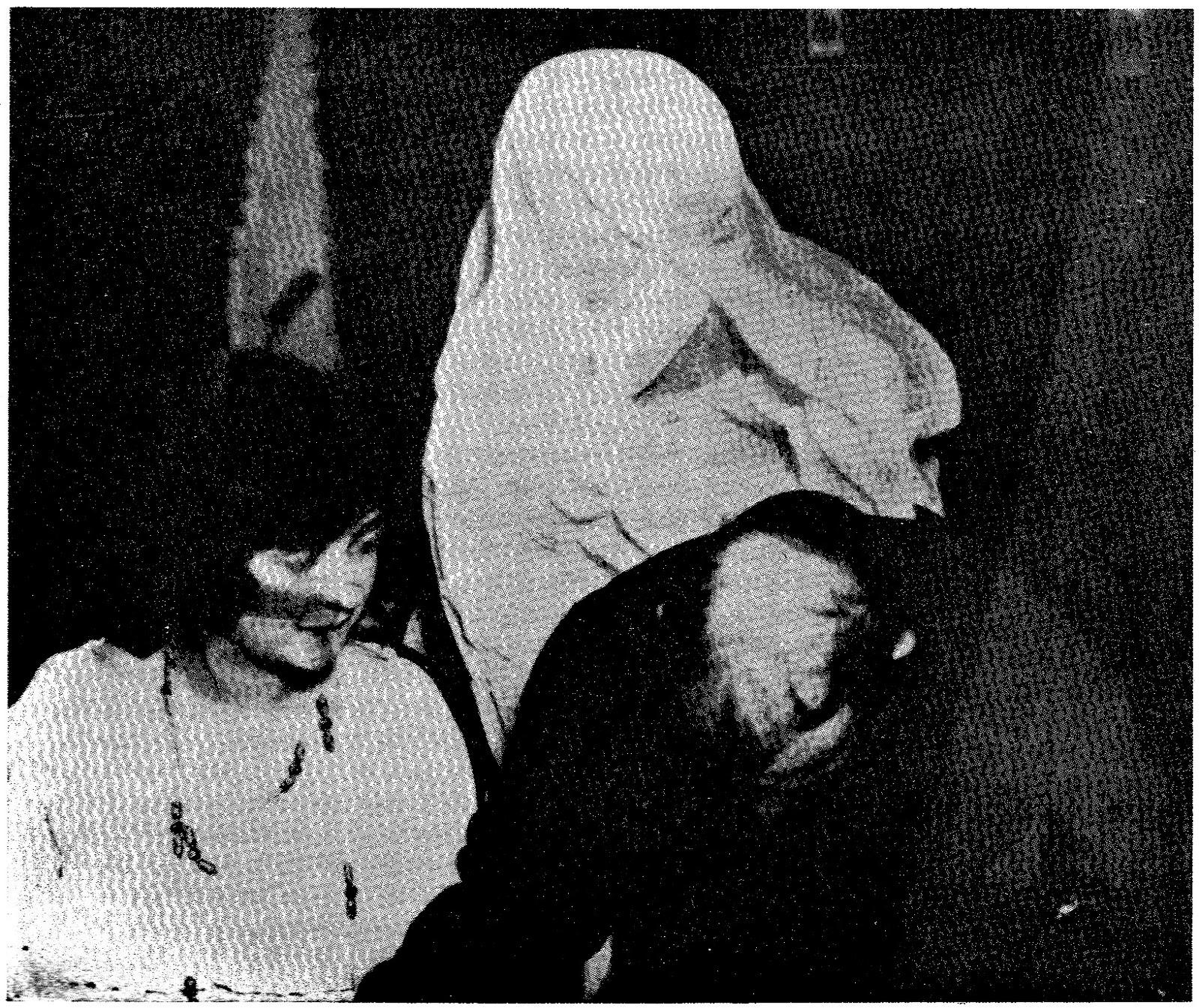 Manifesting Spirits – A Paranormal Theory