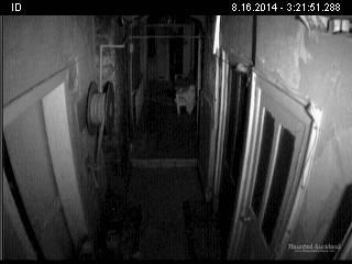 Ghost Cam: Craig Y Nos Castle, Wales UK
