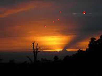 New Zealand UFO Sightings